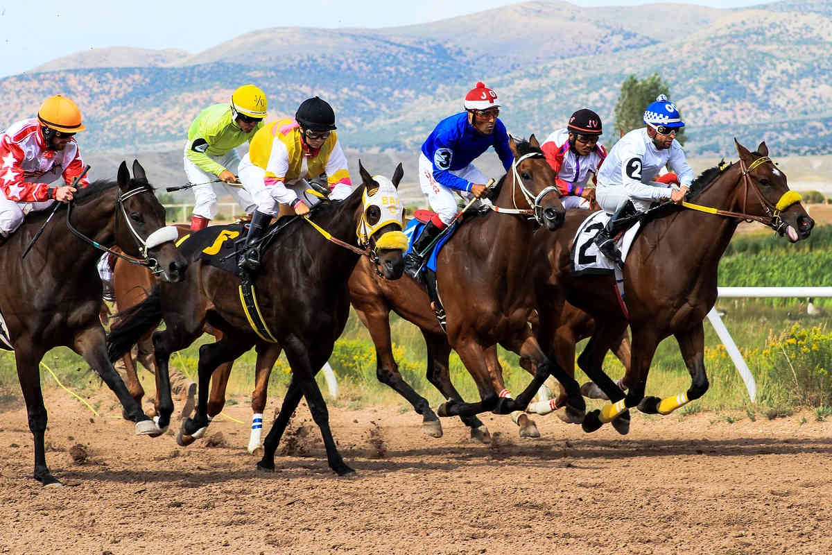 pferdewetten pferderennen sportwetten